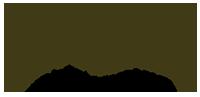 Logoen til Apex Finans